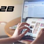 improve b2b ecommerce revenue